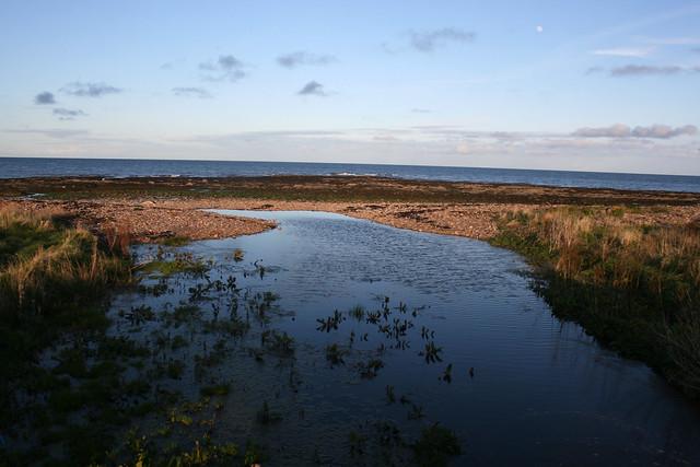 The coast north of Johnshaven