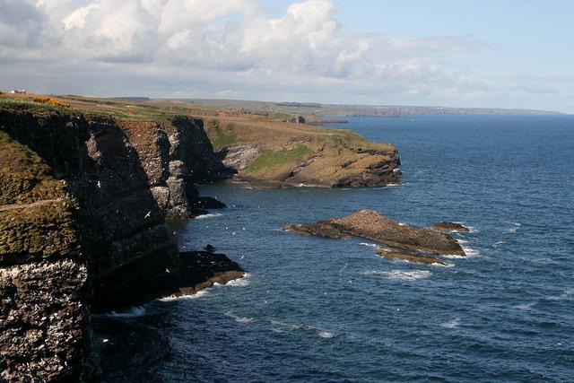 The coast north of Crawton