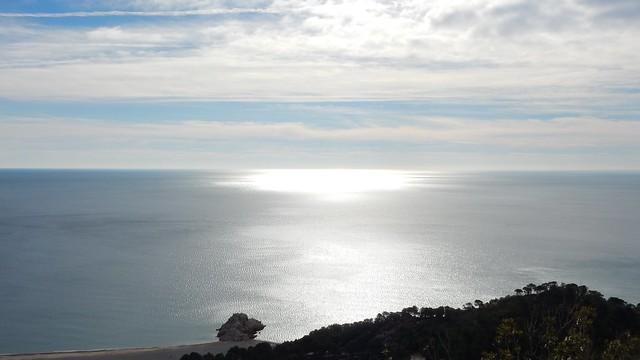 2019-02-10 Passejada per l'Espai Natural Protegit (ENP) La Rojala - Platja del Torn