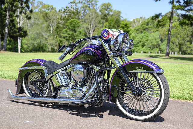 Baldy's Softail Deluxe