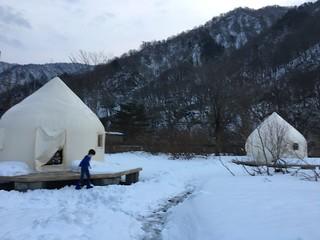 The yurts at Doai station