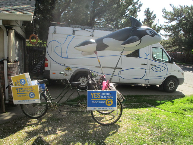 Orcas two on wheels