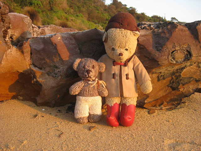 Paddington and Scout at the Seaside 1.