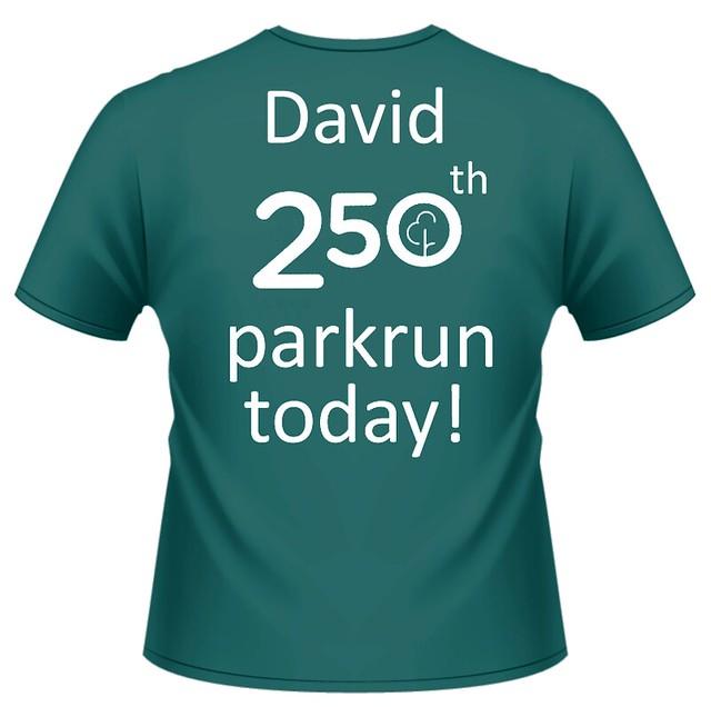 david-t-shirt-250