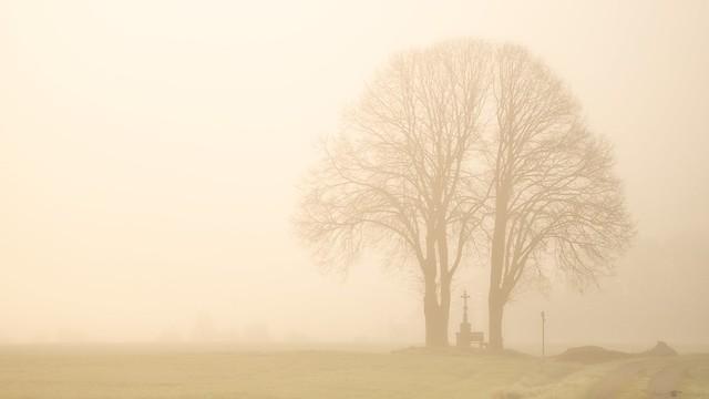 ... und aus den Wiesen steiget der helle Nebel wunderbar ...