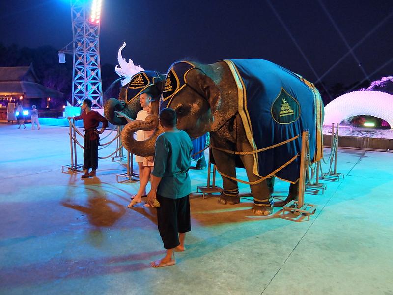 Пхукет - Сиам Нирамит - Слоны