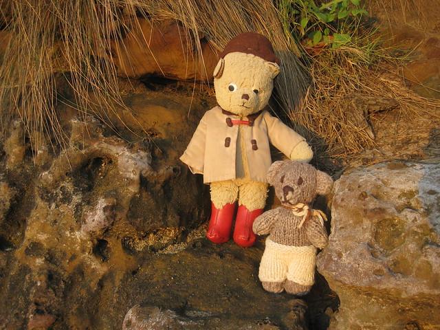 Paddington and Scout Scale the Cliffs