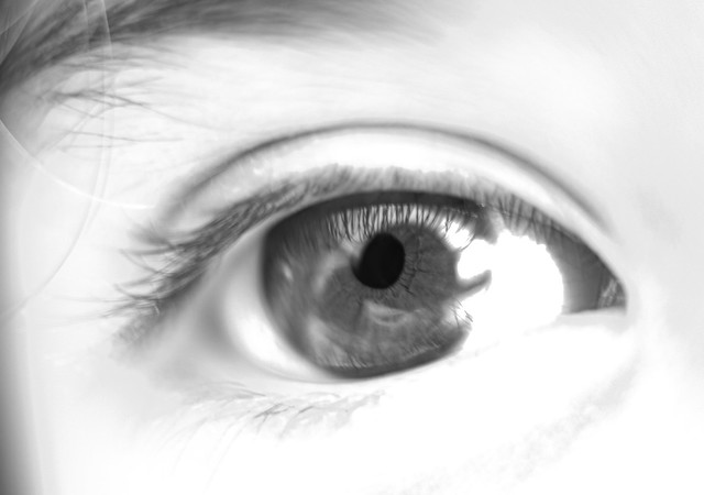 Macro ojo
