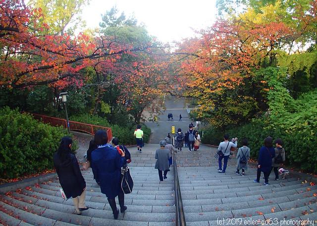 Autumn in Osaka