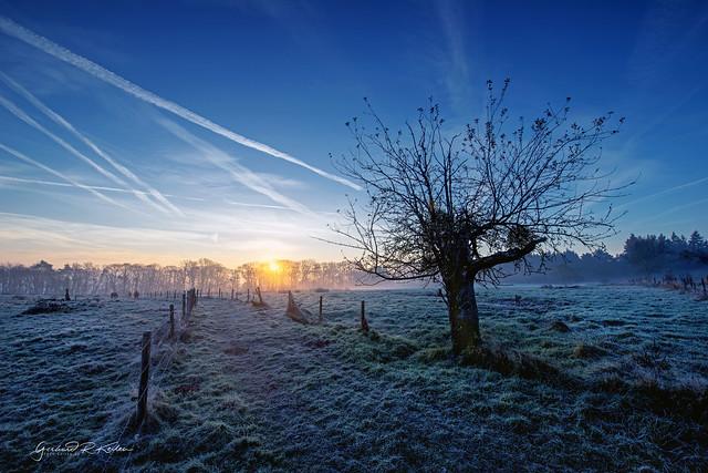 Eifel frostige, Blaue Stunde
