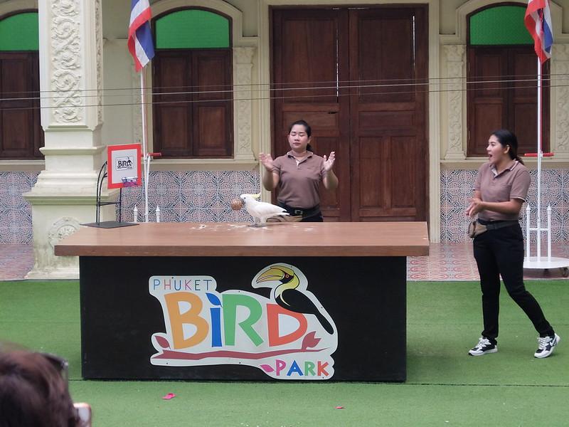 Пхукет - Парк птиц - Какаду