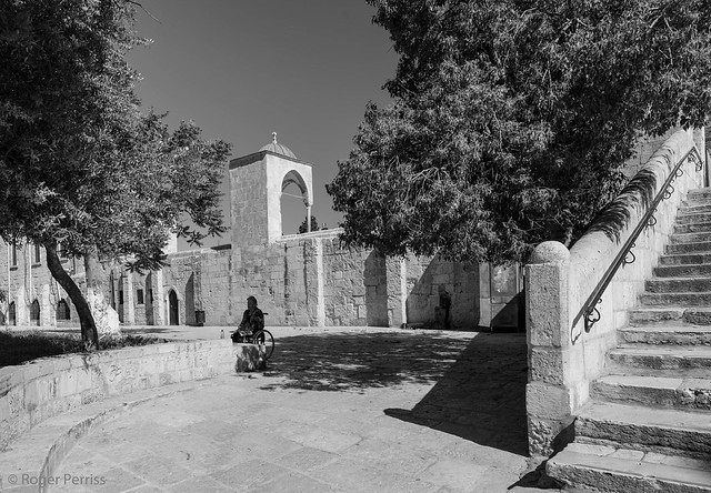 MAN PRAYS IN WHEELCHAIR, TEMPLE MOUNT, JERUSALEM_DSC_4189_LR_2.5