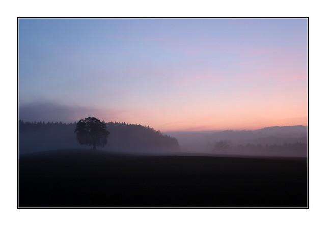 Crépuscule hivernal / Oron-la-Ville