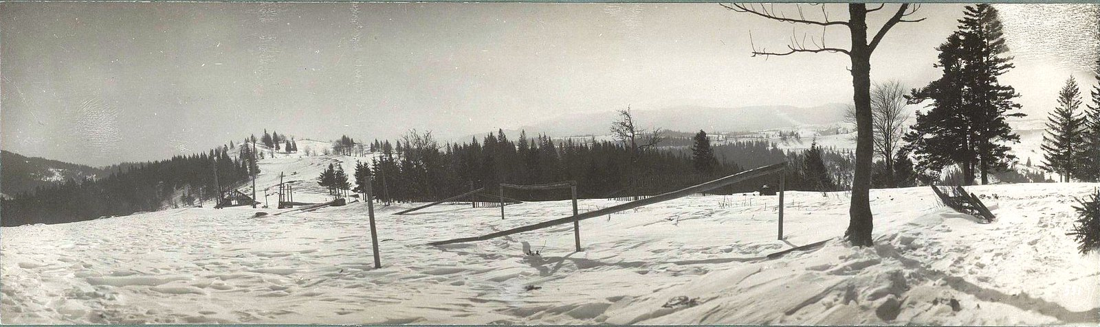 1914. Вид на высоту 1000 м. Галиция