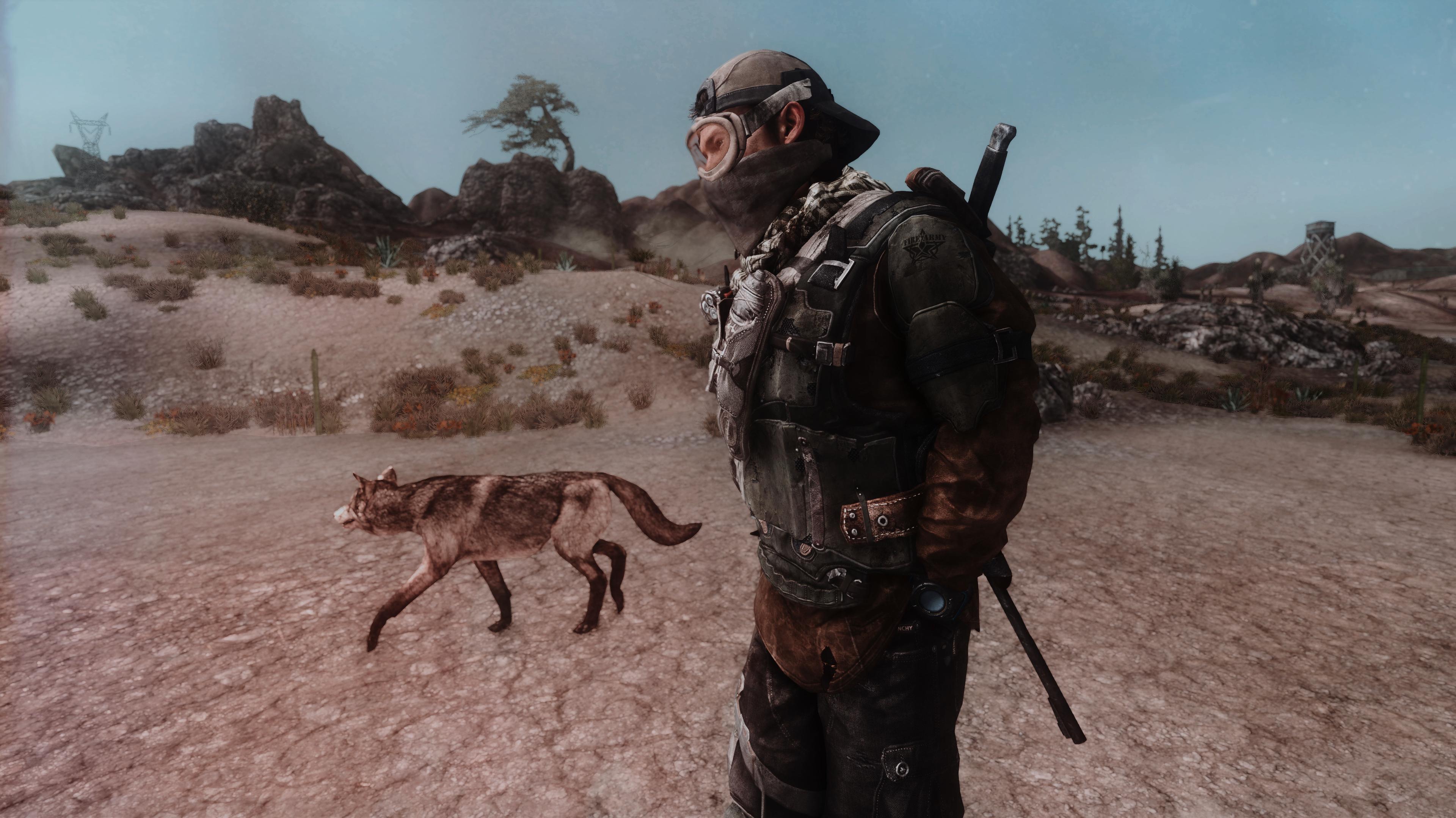 Fallout Screenshots XIV - Page 14 49619543998_0599e0da41_o