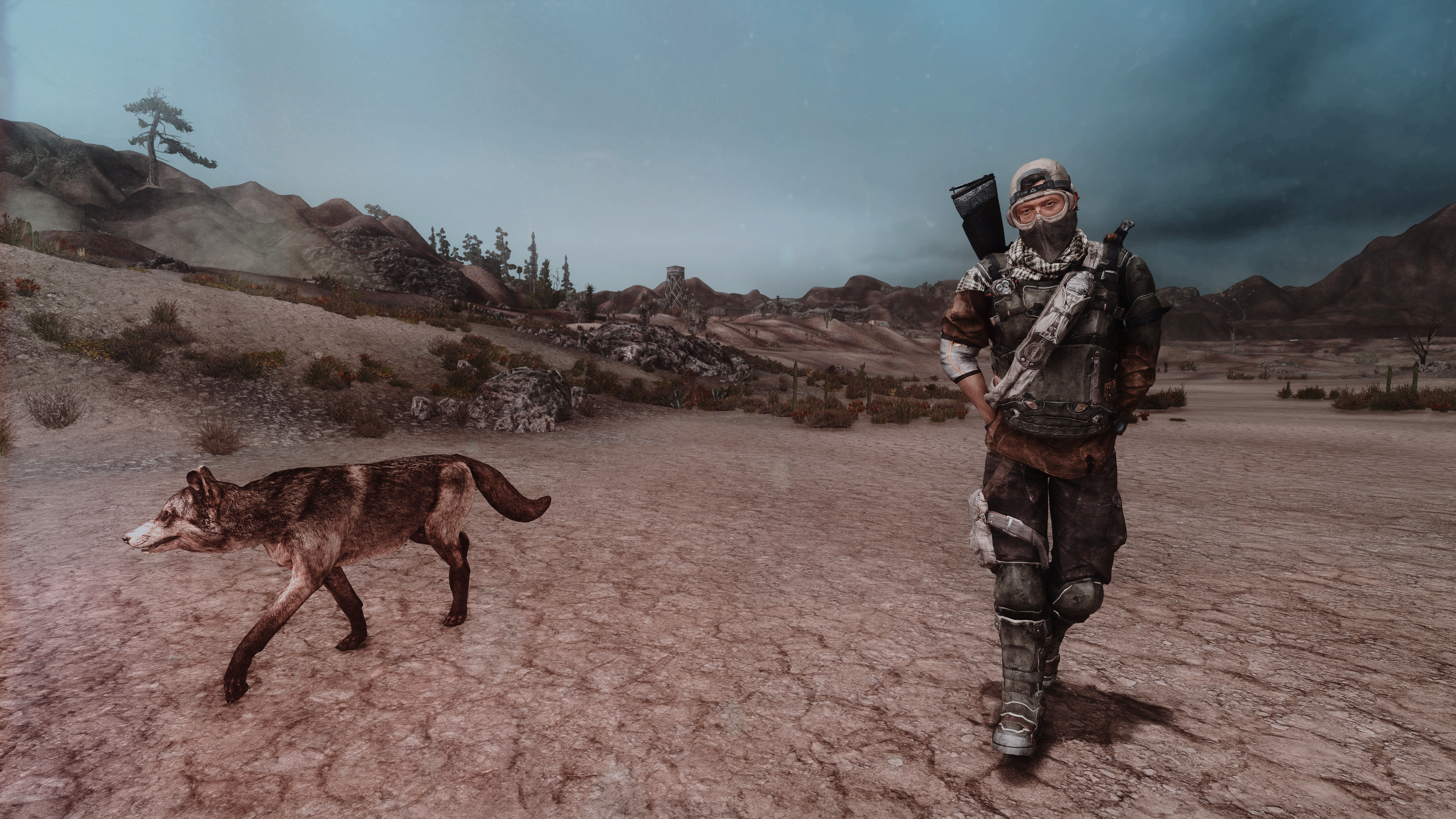 Fallout Screenshots XIV - Page 14 49619549788_971cbe3ed3_o