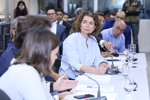 Audiência pública para debater a existência de riscos à saúde pública em relação às suspeitas de intoxicação das cervejas Backer - 4ª Reunião Ordinária - Comissão de Saúde e Saneamento