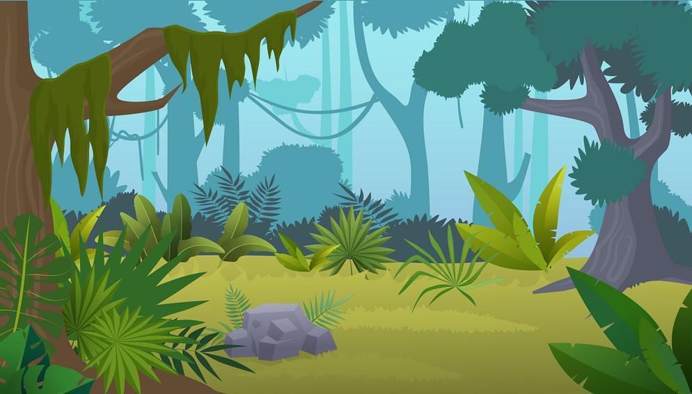 Vector cartoon empty tropical rainforest Jungle background.