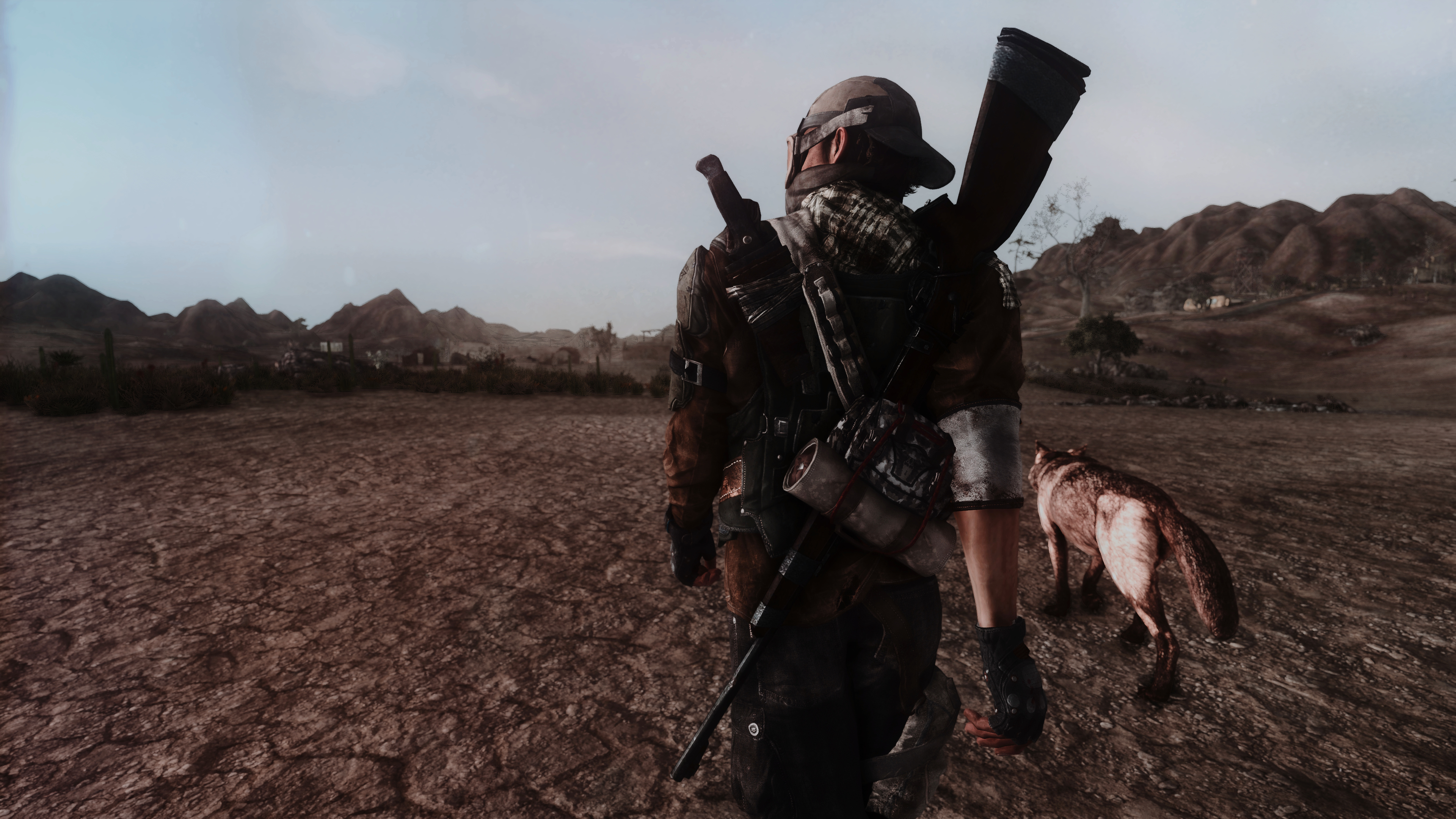 Fallout Screenshots XIV - Page 14 49620029036_6dc66d4720_o