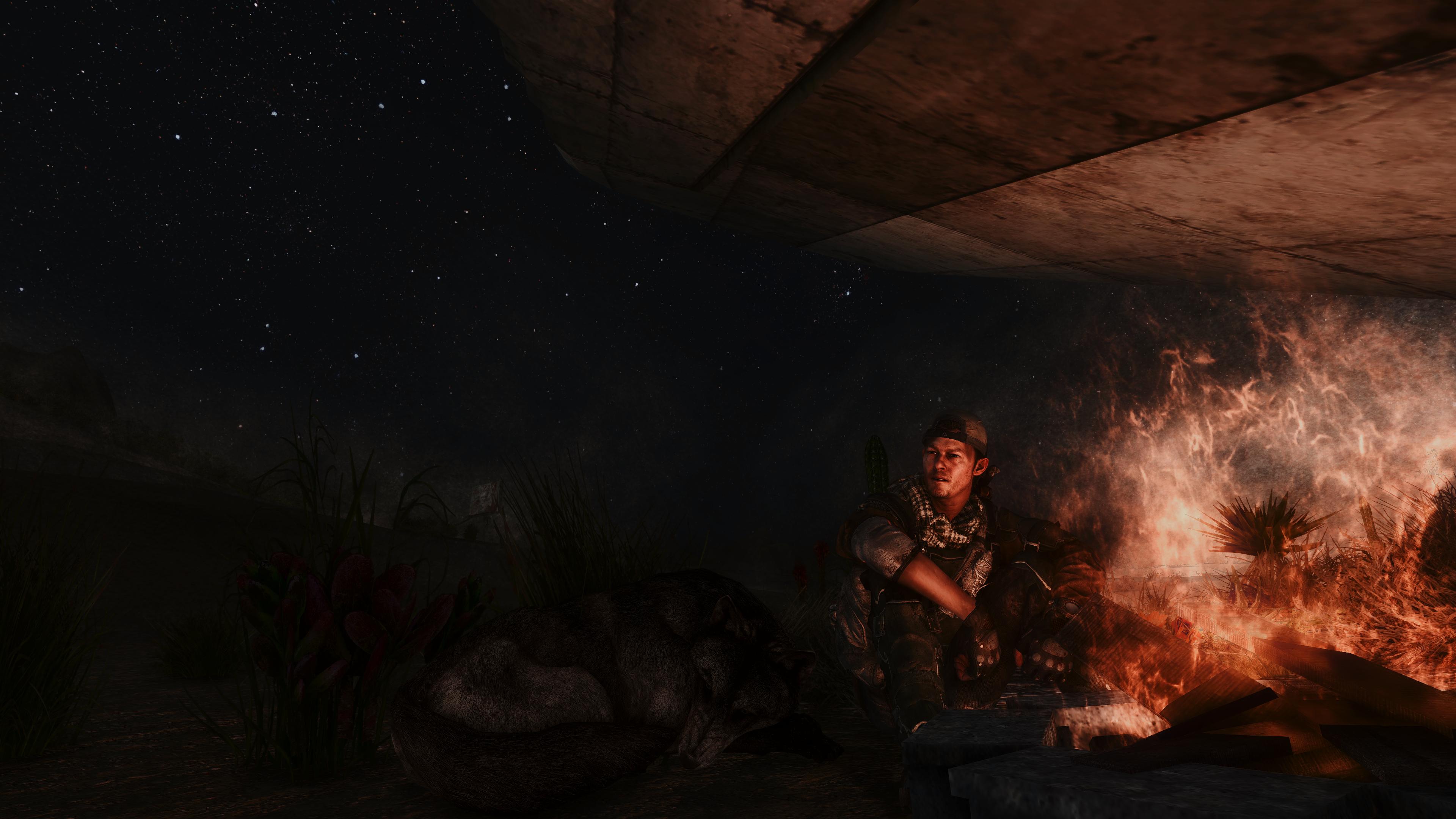 Fallout Screenshots XIV - Page 14 49620035861_fd61838da2_o