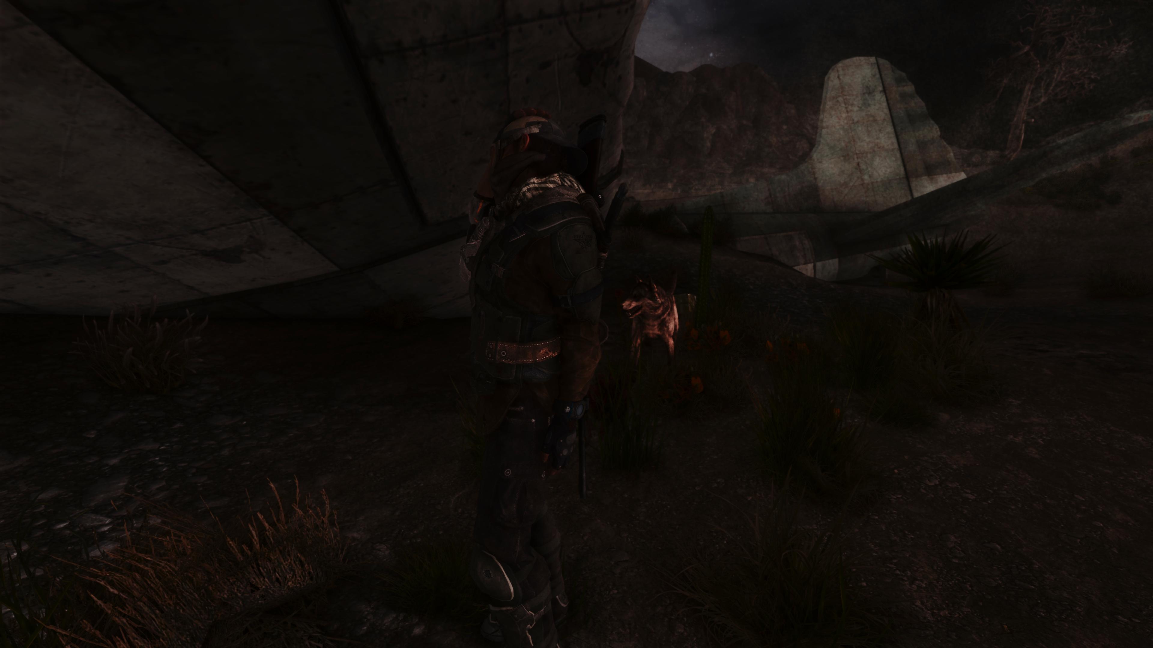 Fallout Screenshots XIV - Page 14 49620037846_c611477a1d_o