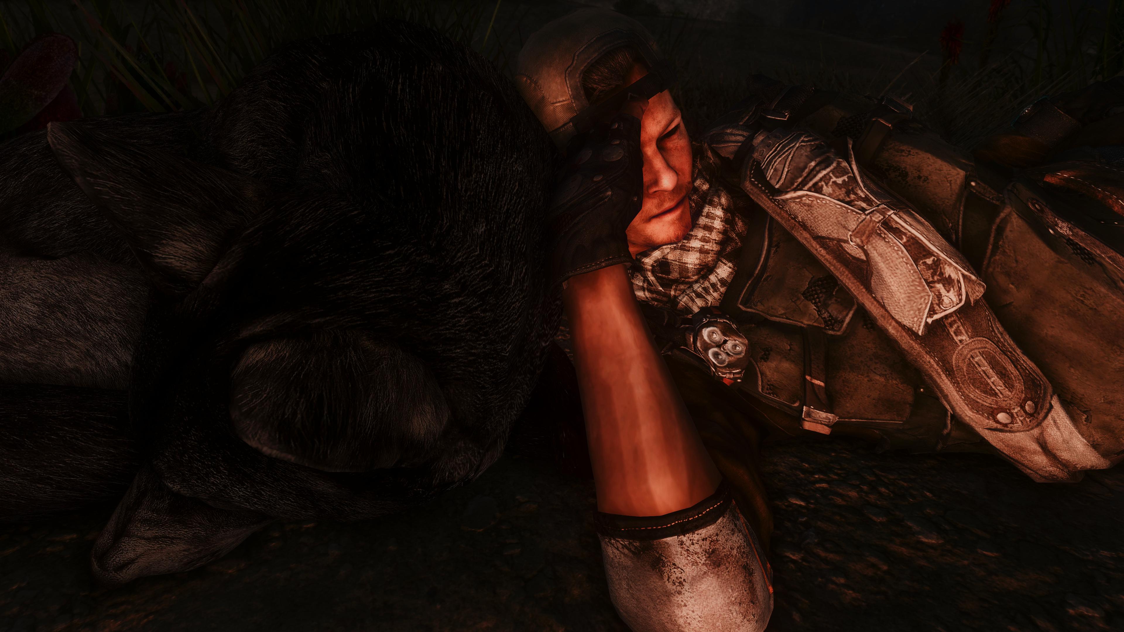 Fallout Screenshots XIV - Page 14 49620038911_659f86e380_o