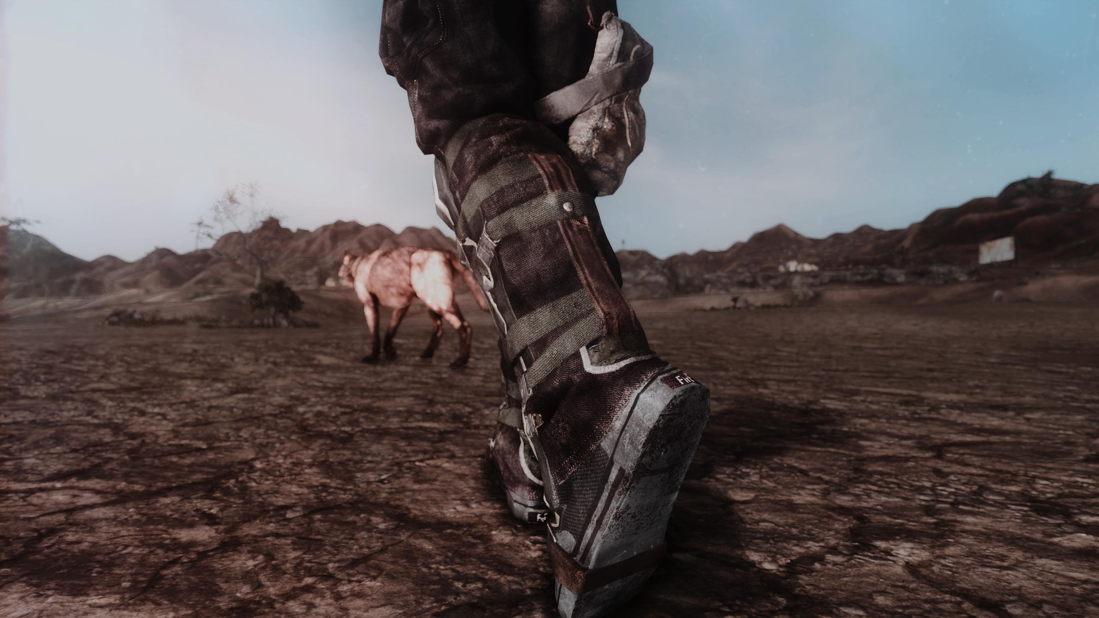 Fallout Screenshots XIV - Page 14 49620298267_fd58a3c943_o