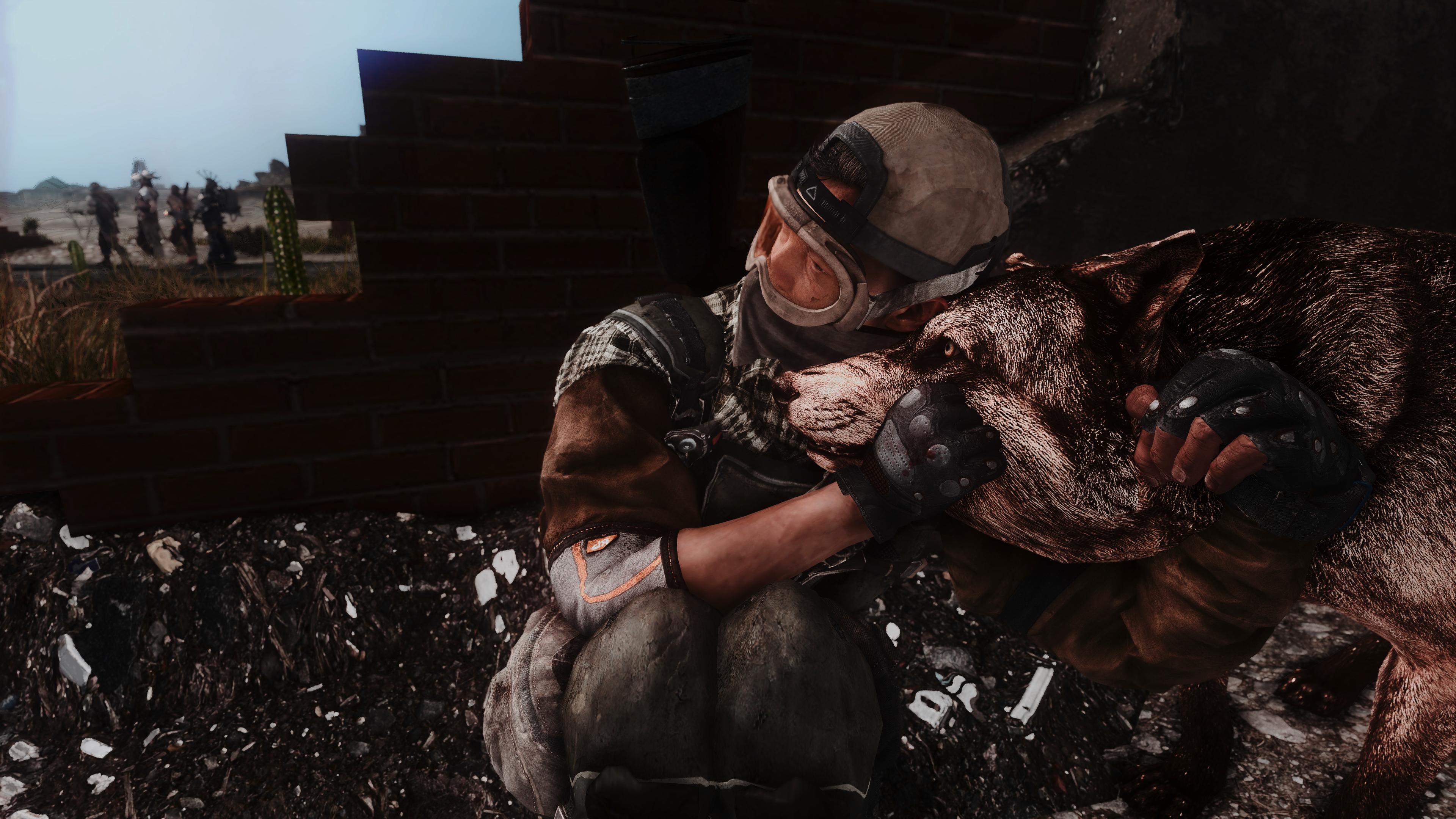 Fallout Screenshots XIV - Page 14 49620317172_e15a12ed38_o