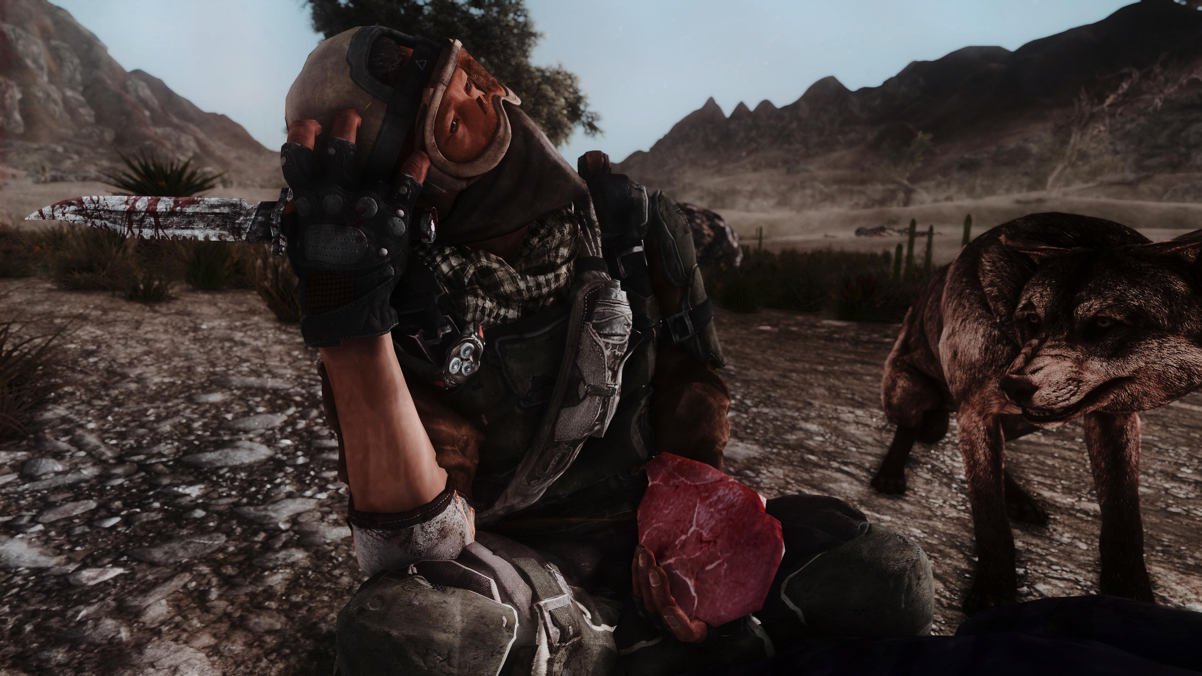 Fallout Screenshots XIV - Page 14 49620323207_53520d1757_o