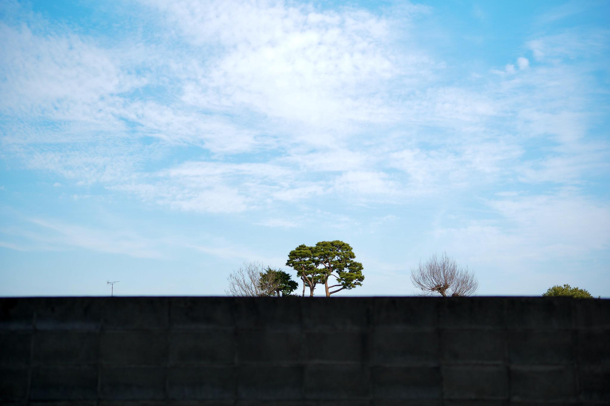LeicaM10P