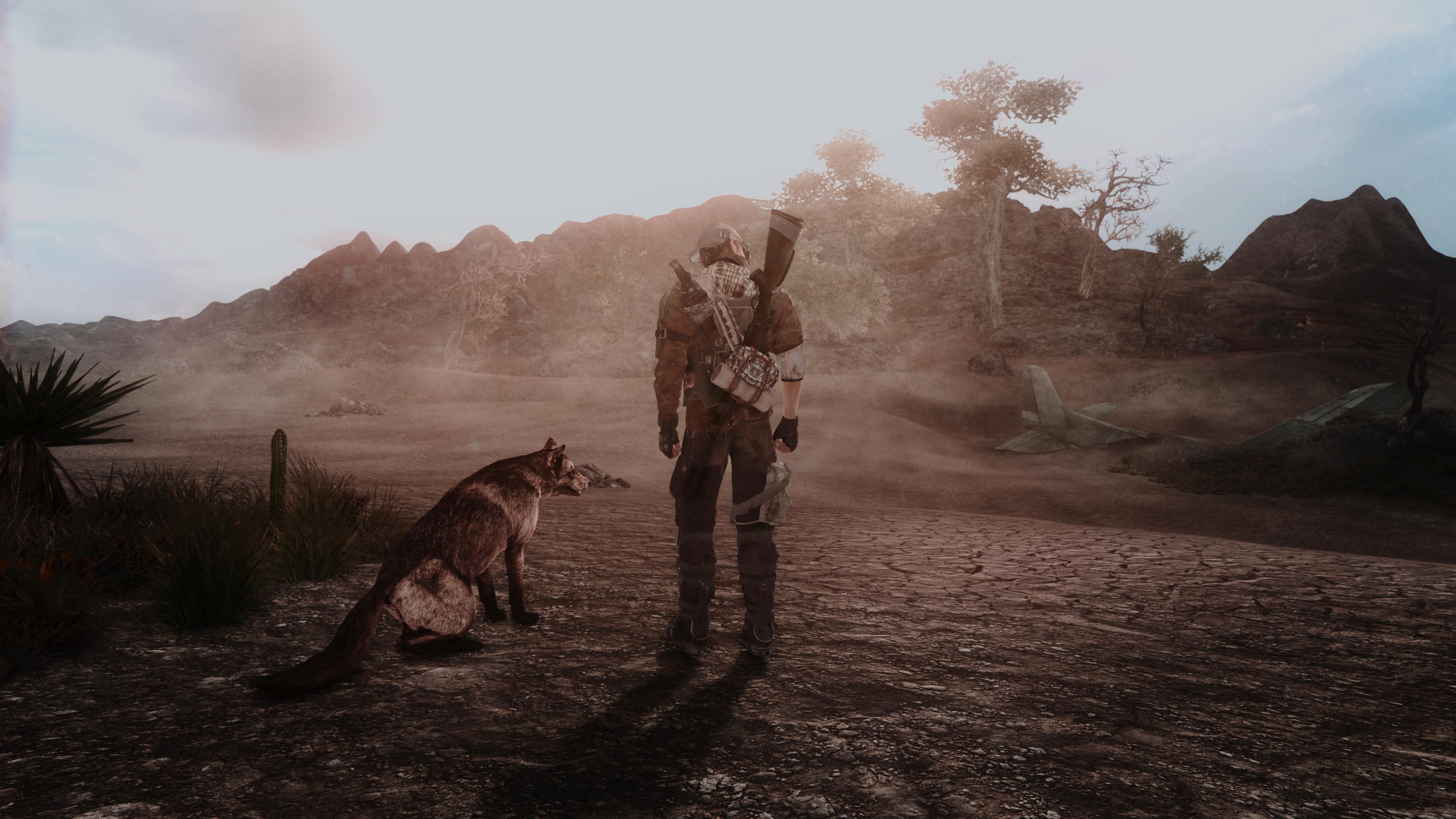 Fallout Screenshots XIV - Page 14 49620345002_4616f31449_o
