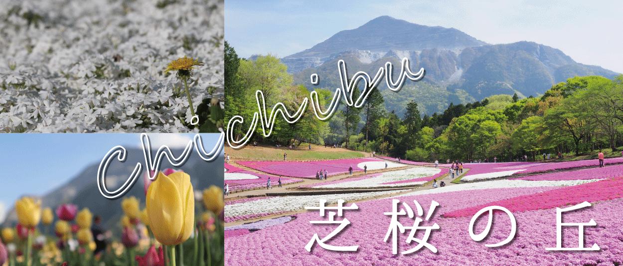 秩父市☆芝桜の丘