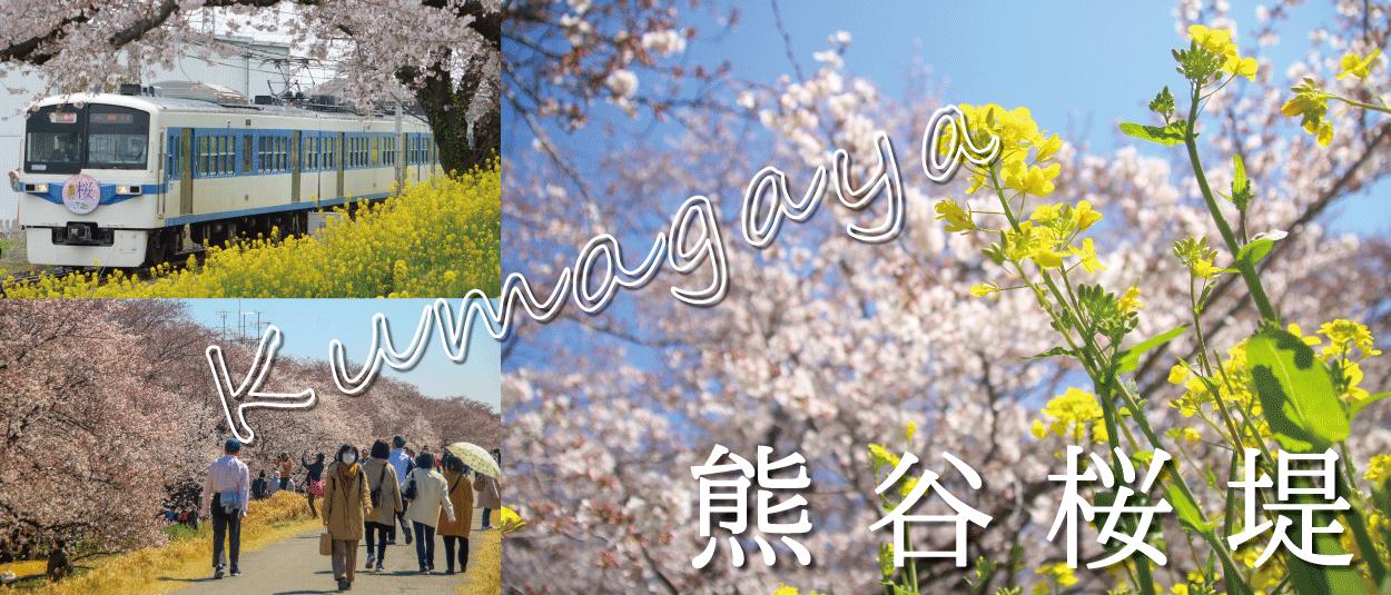 熊谷市☆熊谷桜堤
