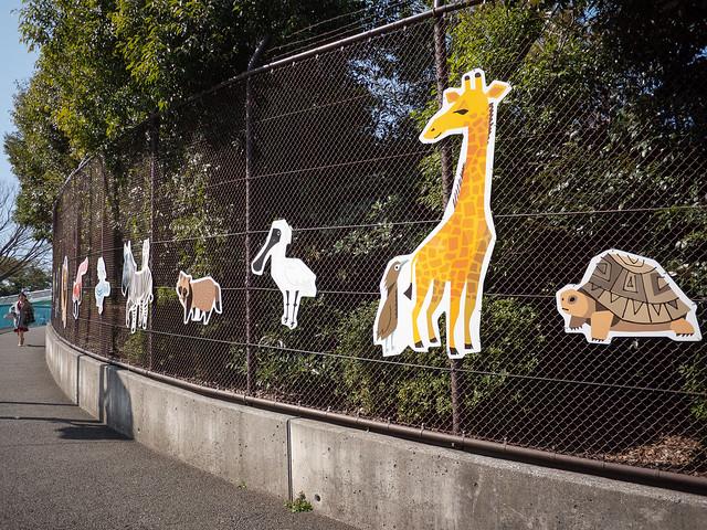 fence of zoo