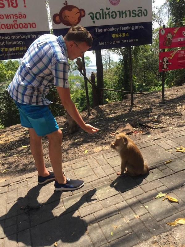 Пхукет - Кормление обезьянки