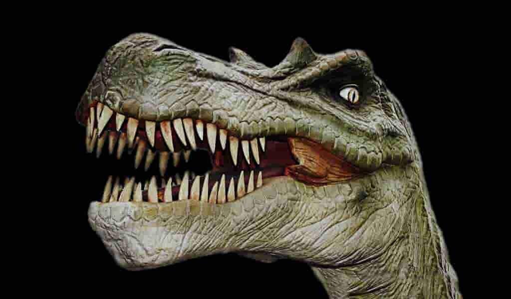 certains-dinosaures-avaient-des-caractéristiques-fluorescentes