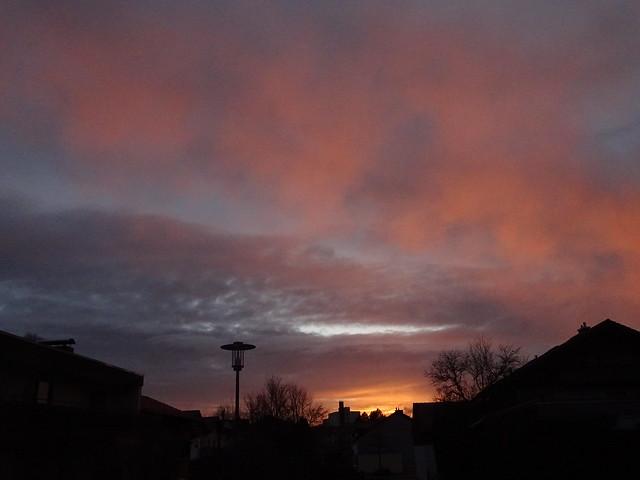 05032020 Morgensonne 007