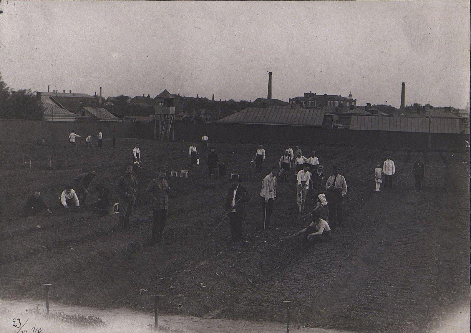 30. Заключённые за работой на огороде