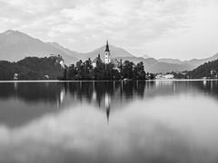 B&W lake Bled.