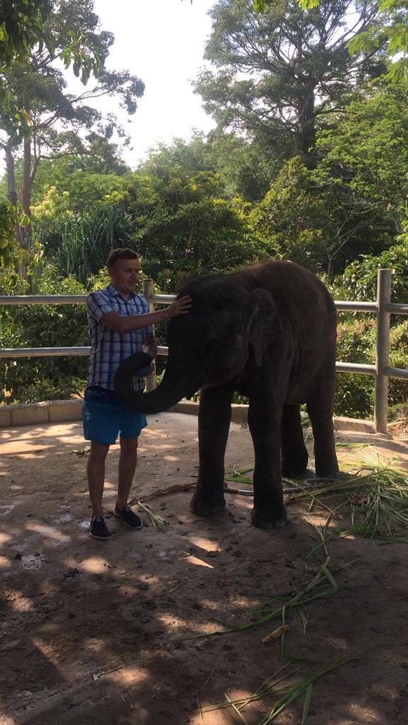 Пхукет - Слоненок