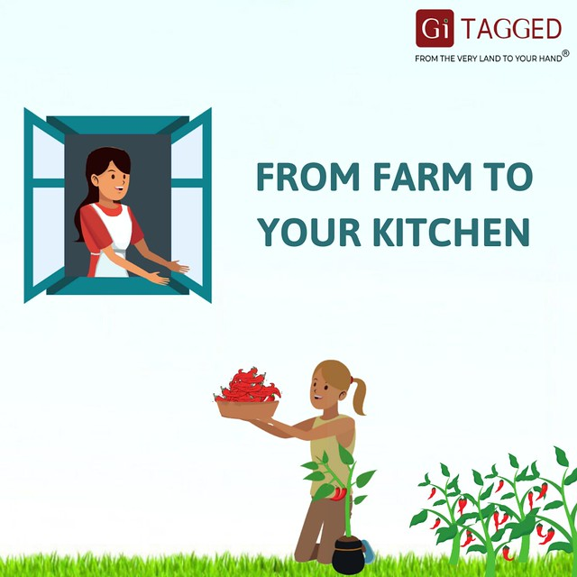 from farm to your kitchen