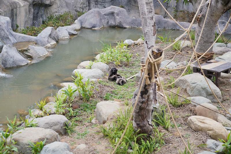新竹市立動物園