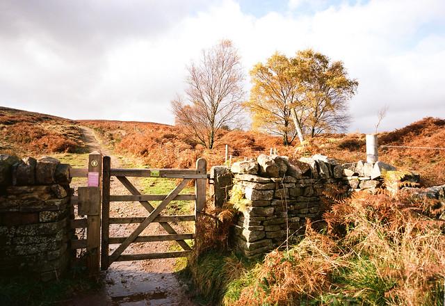Blacka Moor Gate