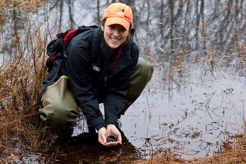 Photo of Maryland Department of Natural Resources Biologist Beth Schlimm holding a tiger salamander.
