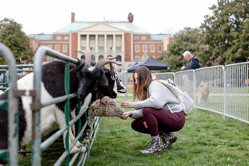 Mental Health Week Petting Zoo