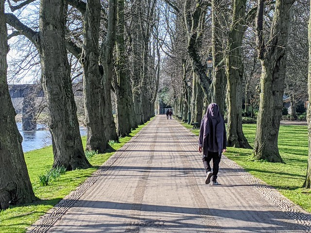 A walk in Avenham Park, Preston