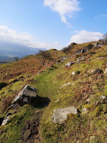 Foel Offrwm path