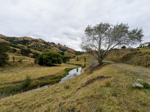 outdoor walking rural walkway otoko hill tree farm fence river waikohu railway moutohora tekaraka gisborne newzealand