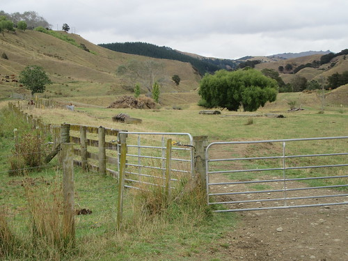 outdoor walking rural walkway otoko hill tree farm fence gate railway moutohora tekaraka gisborne newzealand