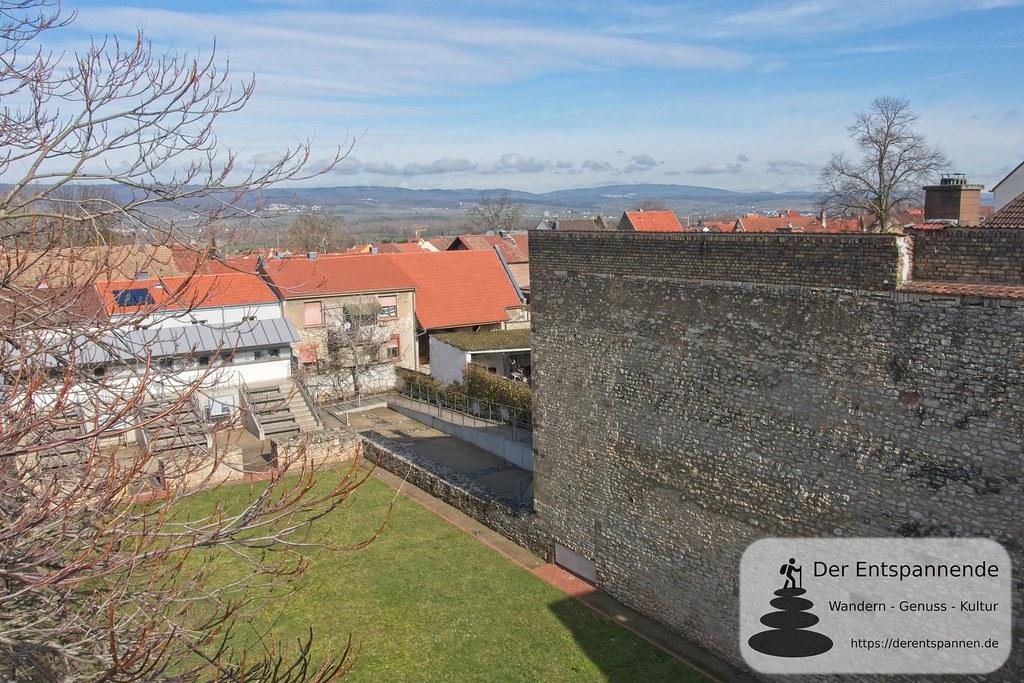 Blick von Wehrmauer Aula Regia (Kaiserpfalz Ingelheim)
